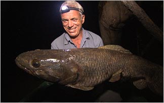 big wolffish with a human friend