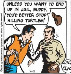 Mark Trail loves turtles